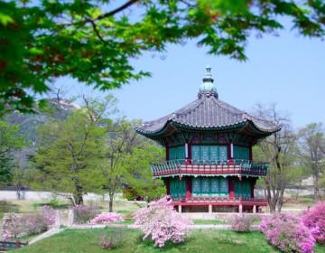 South_Korea_10