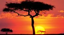 Кения — далекая и прекрасная