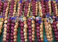 Луковый рынок в Берне (Zibelemarit)