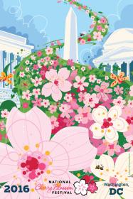 cherry blossom DC (1)