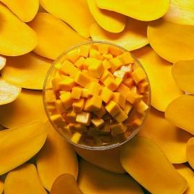 mango-festival-delhi