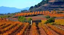 Испания: праздник по-каталонски