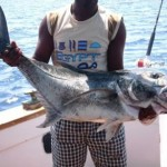 sportfishing-hurghada