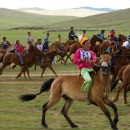 horses_arrival-MAX-w1024h720