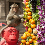 Lopburi-Monkey-Banquet-Festival