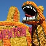lemon-festival